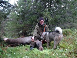 Fredrik og Grappo med elg